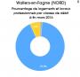 tache:fracture_du_numerique:wallers:wallers.png